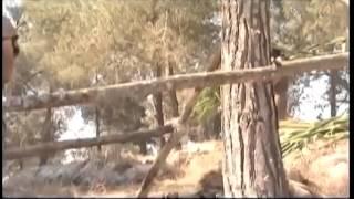 Video Sejarah Kisah Nabi Adam Dan Hawa SERI 1 | ainunnursahid.blogs download MP3, 3GP, MP4, WEBM, AVI, FLV Agustus 2018