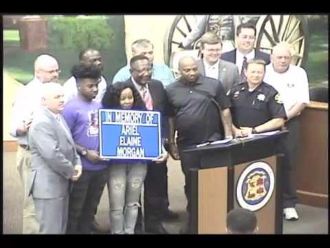 Berkeley County Council Committee Meeting - 4-10-2017