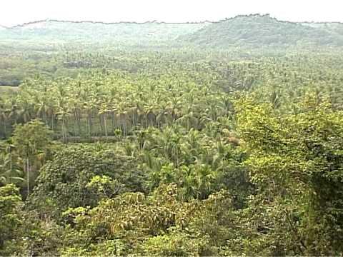 Mahathma Nature Cure Centre, Taliparamba
