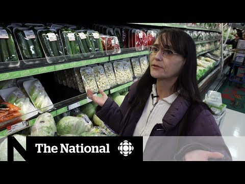 The Reality Behind Food Sensitivity Tests   CBC Marketplace