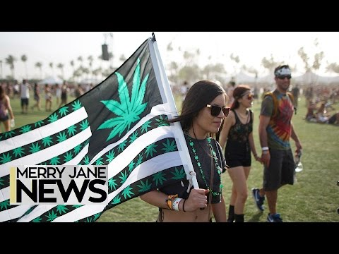 How to Get Away With Smoking Weed at Music Festivals | MERRY JANE News