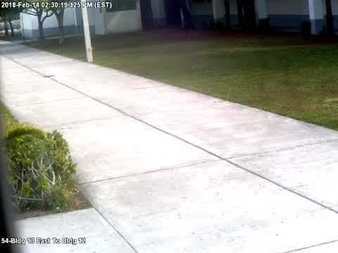 Parkland Shooting Surveillance Video