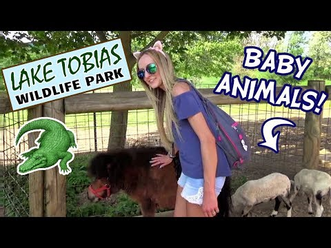 Visiting Lake Tobias Wildlife Park & Safari (with Taxonomist!)