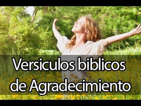 Versiculos Biblicos Sobre El Poder De Ser Agradecidos Musica Para