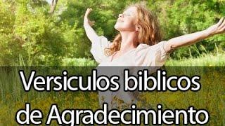 Versiculos biblicos Sobre El poder de ser agradecidos + MUSICA PARA ORAR