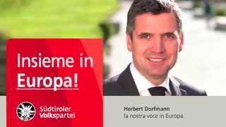 Elezioni europee Dorfmann