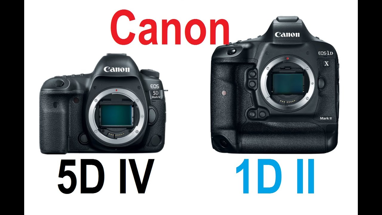Canon 5D Mark IV vs Panasonic GH5 - (3) Reasons to BUY the .