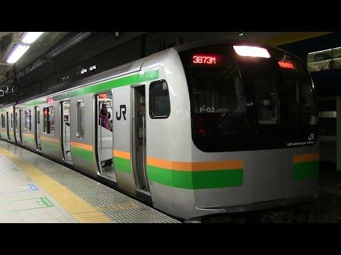 東海道線E217系「アクティー」&「通勤快速」