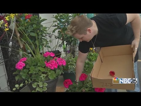 Mother's Day Grinch Tries to ruin busy day for local flower shop
