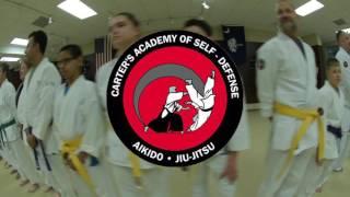 Nihon Goshin Aikido & Gracie Jiu-Jitsu at Carter's Academy of Self-Defense