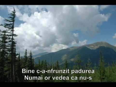 Doru Stanculescu - Hai, hai, haidi, hai (Pe sub flori ma leganai)