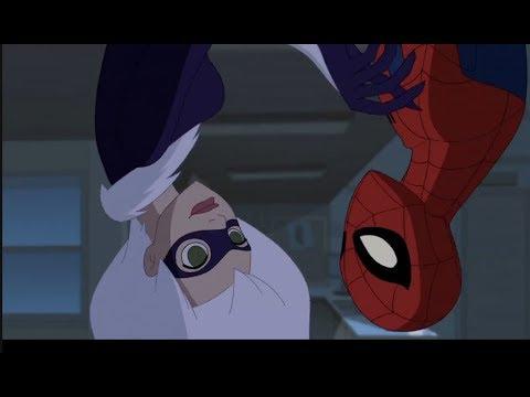 Spider-Man VS Black Cat