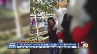 Video appears to show Disneyland character misbehaving