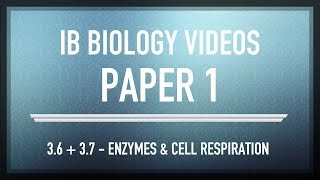 3 6 3 7 enzymes cell respiration ib sl biology past exam paper 1 questions