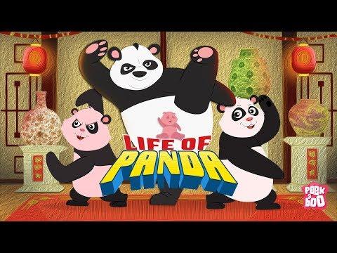 download Life Of Panda - The Dr. Binocs Show | Best Learning Videos For Kids | Peekaboo Kidz