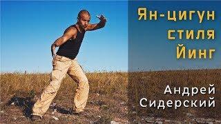 Трейлер | Андрей Сидерский |  Ян-цигун стиля Йинг (теория + практика)