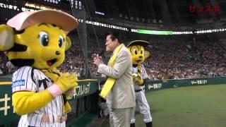 甲子園球場での阪神-DeNA戦のイニング間にグランドに登場したアン...