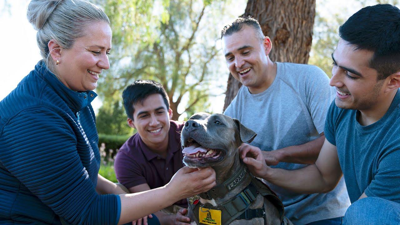 Dog Chow - Even Heroes Need Heroes - Sergio & Laramie's Veteran Story