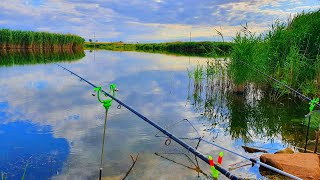 МЫ думали по нашу душу ПОЛИЦИЯ рыбалка с ночевкой  летом 2020