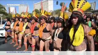 Amazonie : la Norvège suspend ses subventions