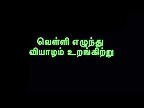 MLV-Thiruppavai-PullinVai-Pasuram- 13