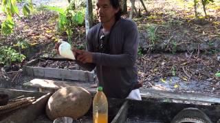 Homemade Cassava Flour - Amazon Rainforest, Brazil - Dez.2014