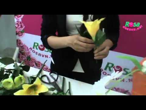 Cắm hoa kiểu chữ s - rosavn.net