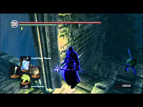 Dark Souls PvP - Forest Hunters Power
