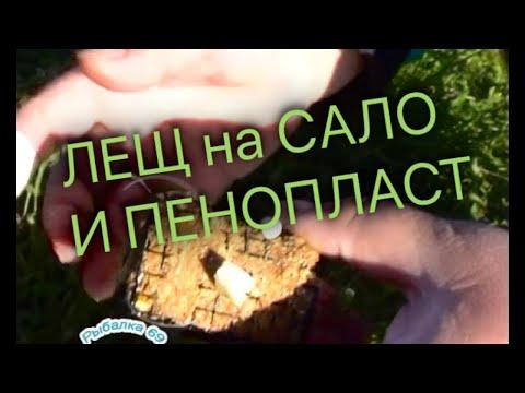 Как ловить леща на сало видео