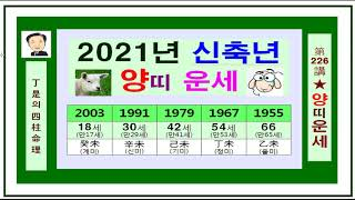 2021년 양띠 운세-신축년 양띠 운세-정시의 사주명리226강-2021년 신축년 양띠운세 입니다.