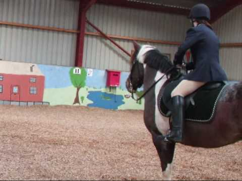 Dressage gone really really wrong!