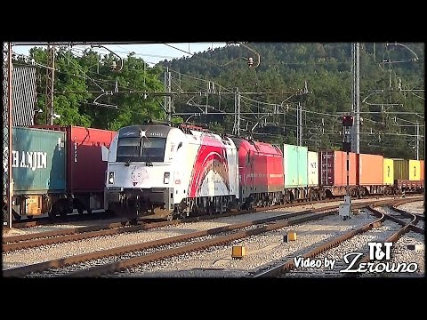 Koper line: rail traffic in july 2016 - [30 min]