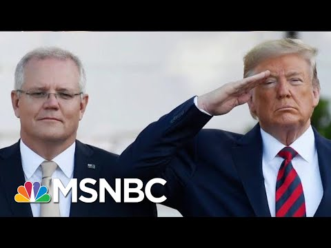 President Donald Trump Under Fire For 2020 Collusion | The Beat With Ari Melber | MSNBC