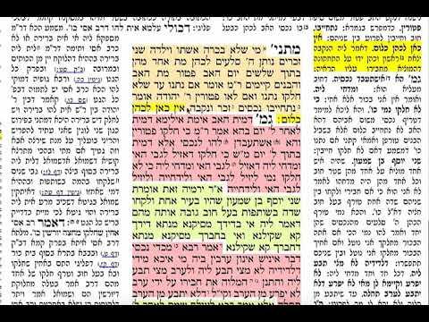 הדףהיומי מסכת בכורות דף מח Daf yomi Bechoros daf 48