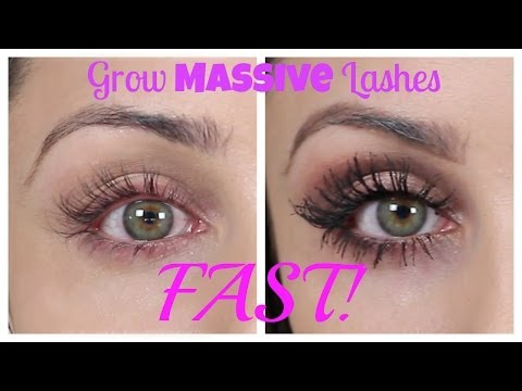 How To Grow Massive Eye Lashes FAST | Kristi-Anne Beil
