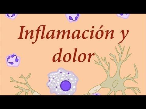 EMP Fisiología: Inflamación y dolor