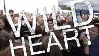 Wild Heart Official Lyric Video