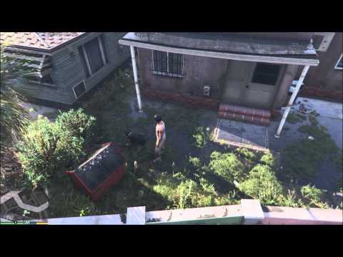GTA V Chop the Dog! All Collar Colors and Tricks