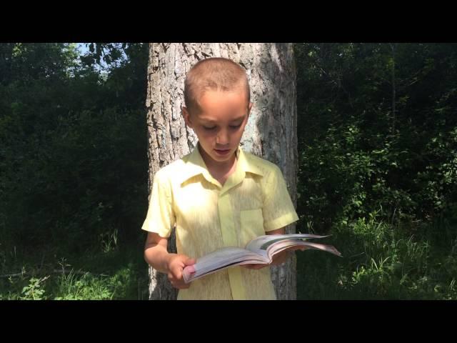 Изображение предпросмотра прочтения – ПавелКузьмн читает произведение «Руслан и Людмила» А.С.Пушкина