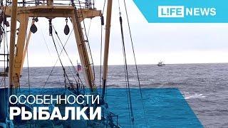 Съемочная группа LifeNews вышла на лов сельди в Охотское море(За лучшее видео платят 1 000 000 рублей! Бери в руки смартфон, снимай на видео значимые события, отправляй через..., 2015-12-30T08:15:44.000Z)