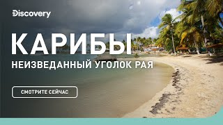 Карибы | Неизведанные острова | Discovery Channel