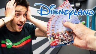 Boss Paid Everyone To Go To Disneyland!