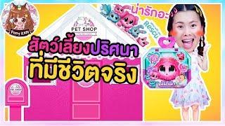 สัตว์เลี้ยงปริศนามีชีวิตจริง Pet shop กล่องกระดาษพี่โพนี่ | Pony Kids