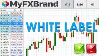 A Forex White Label – 3 Reasons You Shouldn't Start One!