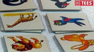 Memo Oyunları - Eğitici Çocuk Resimli Hafıza ve Eşleştirme Kart Oyunları