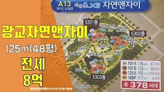 광교아파트 자연앤자이3차 전세 48평형