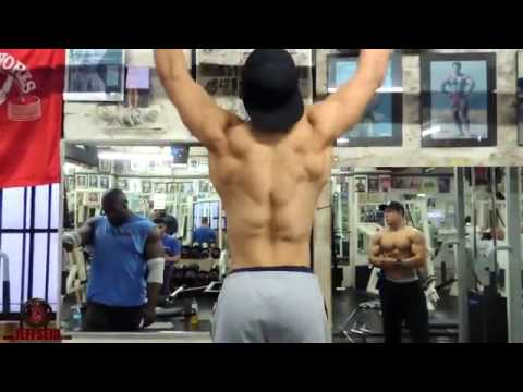 aesthetic bodybuilding  fitness motivation workout in