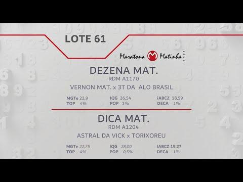 LOTE 61 Maratona Matinha