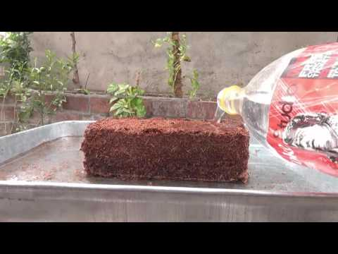 What Is Coco Peat | How to Use Coco Peat | Coco Peat Benefits | November-2016(urdu/hindi)