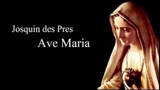 ジョスカン デ プレ アヴェ マリア タリス スコラーズ josquin des prez ave maria